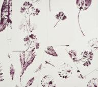 Illustrations de plantes • 23janvier • Créateur de papeterie artisanale d'inspiration japonaise / 23-janvier.fr