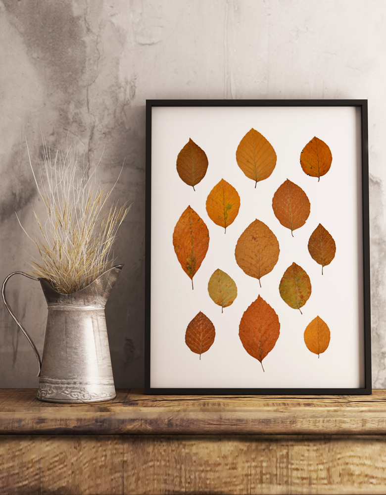 Herbier hêtre - affiche A3 décorée de feuilles de hêtre • Création naturelle, herbier d'automne à encadrer / atelier 23janvier