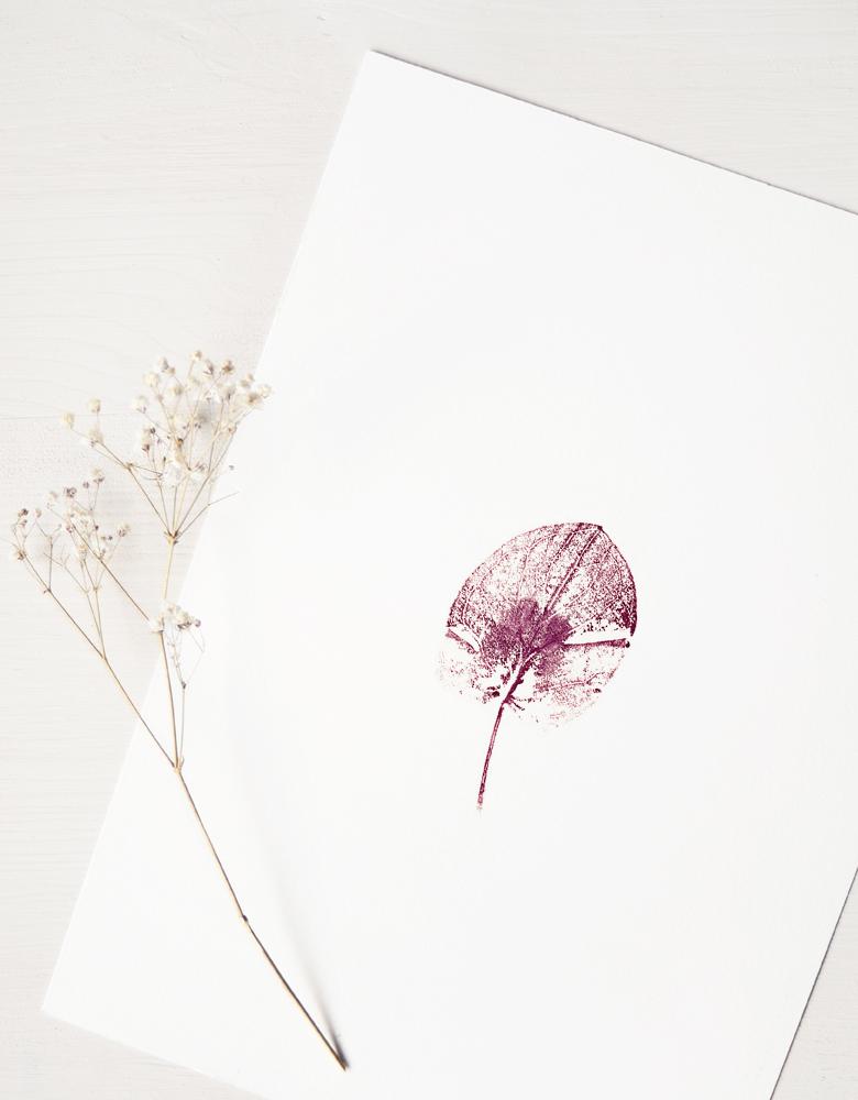 Affiche Arum - illustration de feuille d'Arum tacheté • L'atelier 23janvier propose des affiches inspirées de la nature et du monde végétal