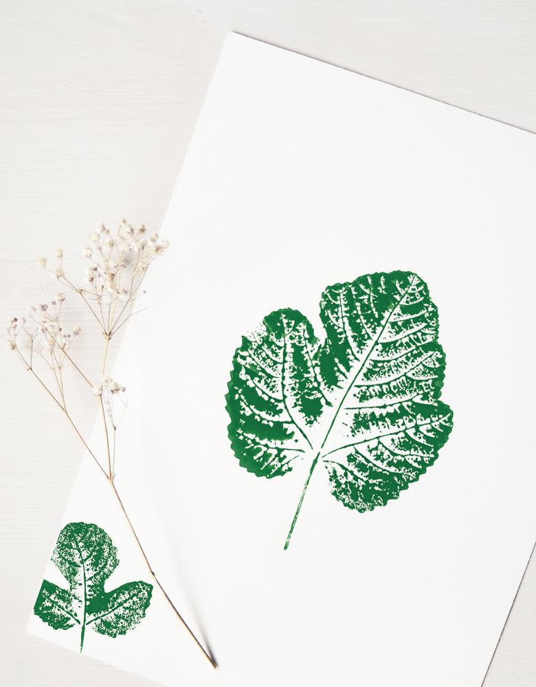 Affiche Figuier - illustration de feuilles de figuier • Affiche nature avec encadrement en bois naturel sur demande / Créée par l'atelier 23janvier