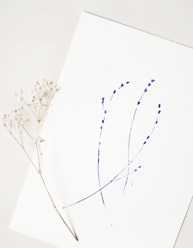 Affiche Graminée - illustration florale délicate • L'atelier 23janvier propose une collection d'affiches inspirée du monde végétal et de la nature