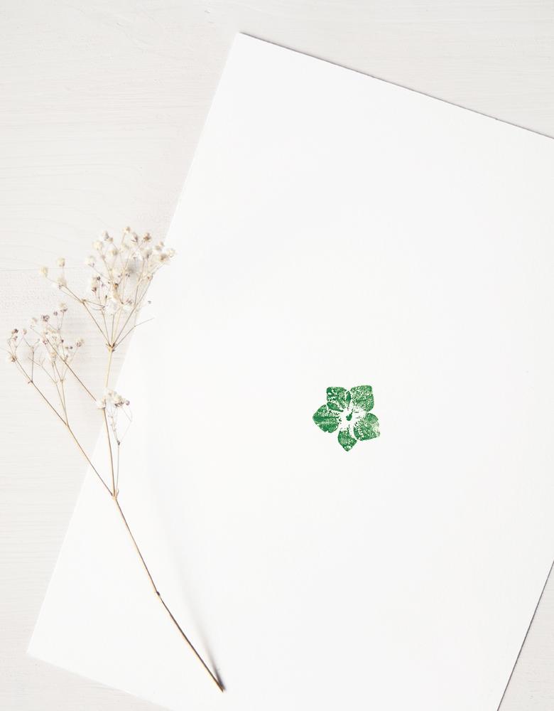 Affiche Hortensia - illustration de fleur d'hortensia • L'atelier 23janvier propose une collection d'affiches inspirée du monde végétal et de la nature