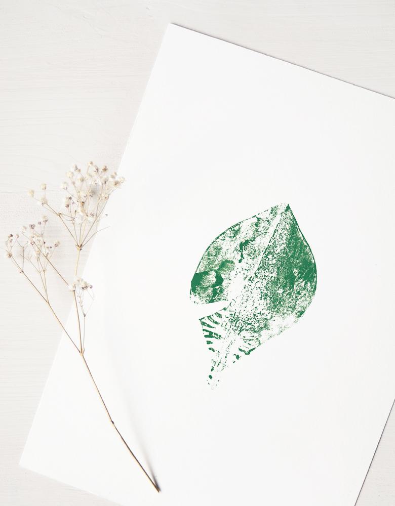 Affiche Magnolia - illustration d'inspiration florale • L'atelier 23janvier propose une collection d'affiches inspirée du monde végétal et de la nature