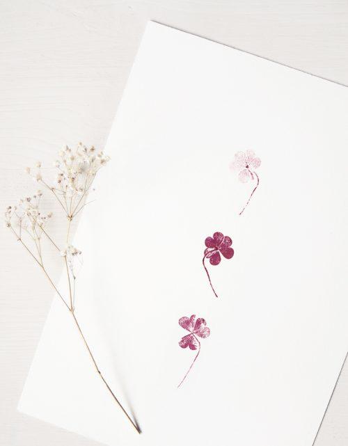 Affiche Trèfle - illustration de feuilles de trèfle • L'atelier 23janvier propose une collection d'affiches inspirée du monde végétal et de la nature