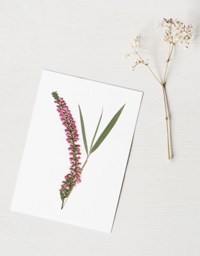 Herbier Bouquet bruyère - composition fleur de bruyère et bambou • Herbier à encadrer, invitation à découvrir les détails subtils du monde végétal