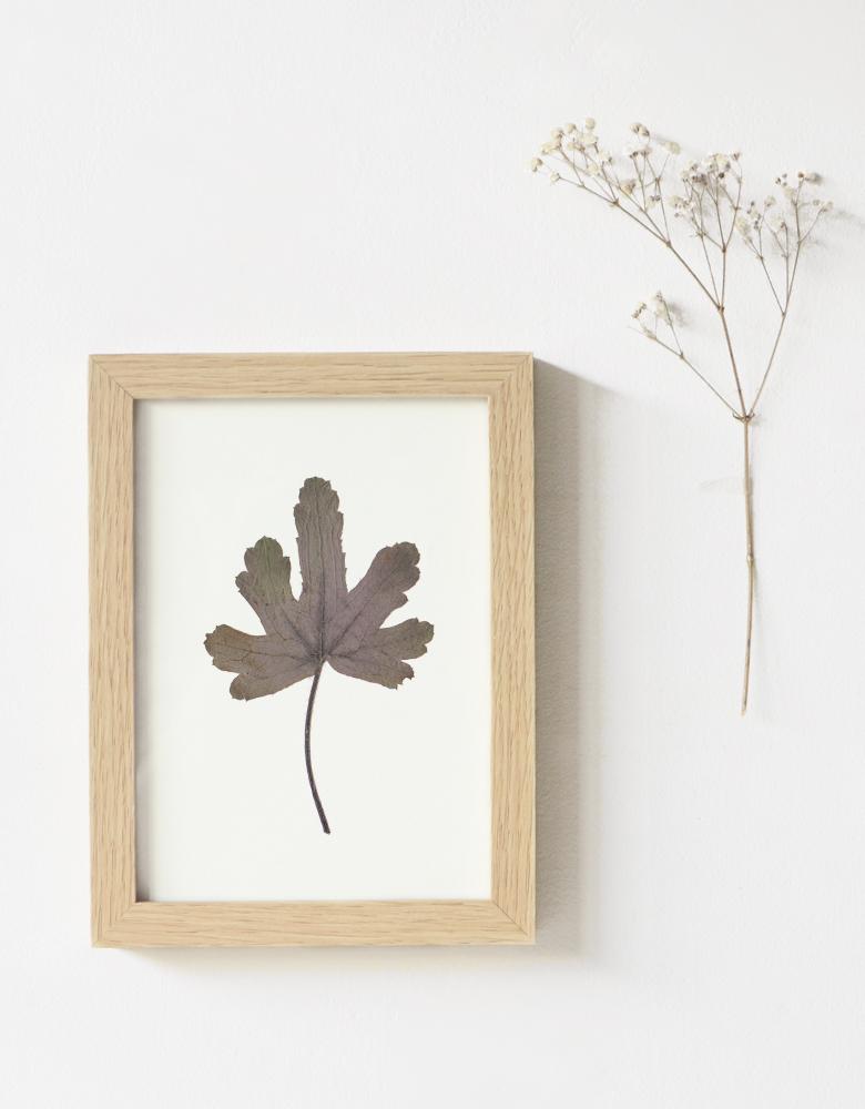 Herbier Heuchère - carte A6 décorée d'une feuille d'heuchère • Herbier créé dans le sud-ouest par l'atelier 23janvier / création unique