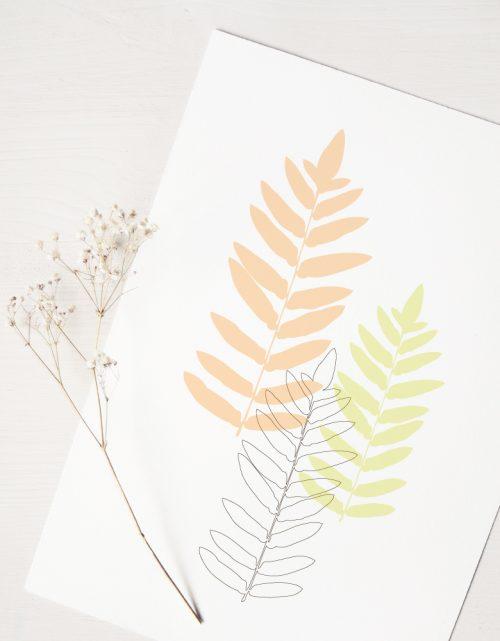 Affiche Fougère - décoration Nature • créateur 23janvier