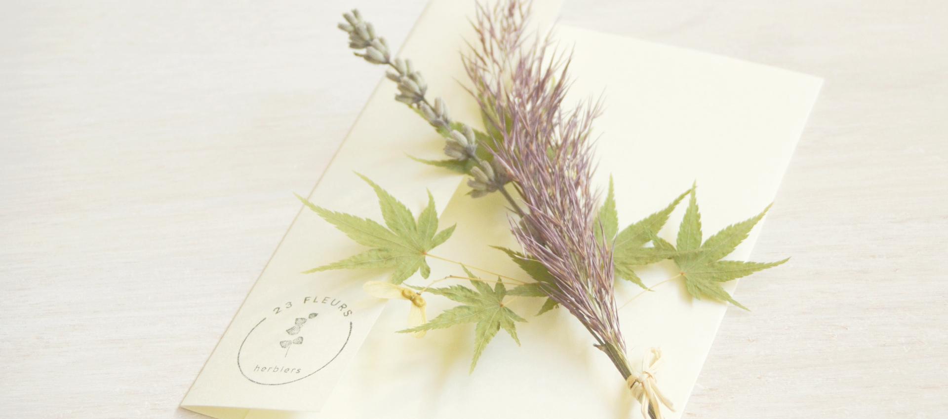 23janvier_home_flex_bouquet_offert_02_1920x850_23janvier