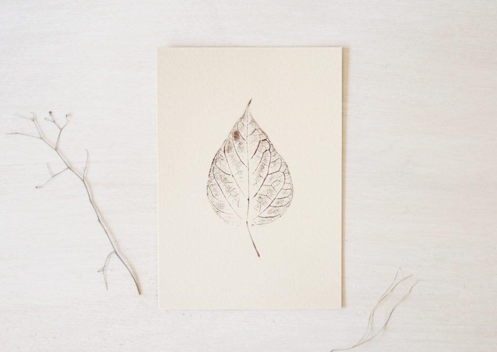 Catalpa - petite affiche végétale A5 • atelier 23janvier