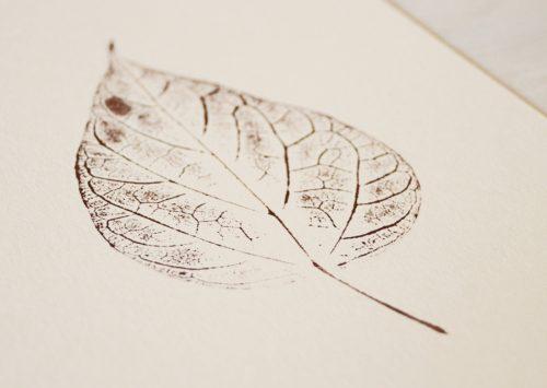 Catalpa - petite affiche nature A5 • atelier 23janvier