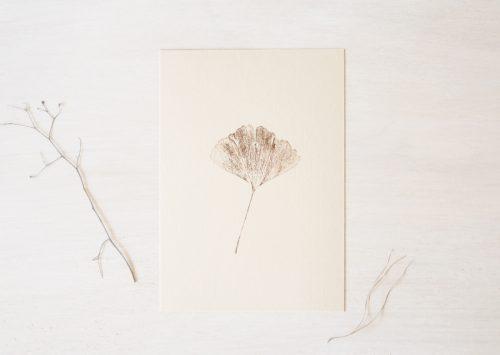 Ginkgo biloba - petite affiche végétale • atelier 23janvier