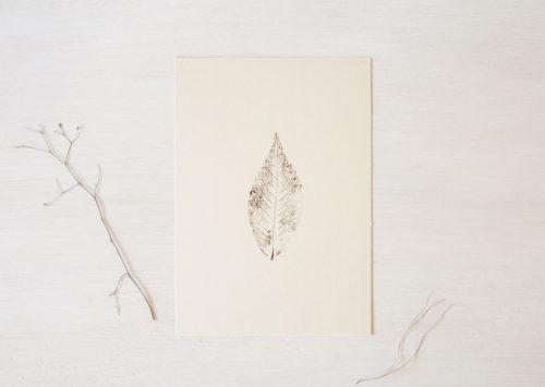 Noyer - affiche nature & végétal • atelier 23janvier