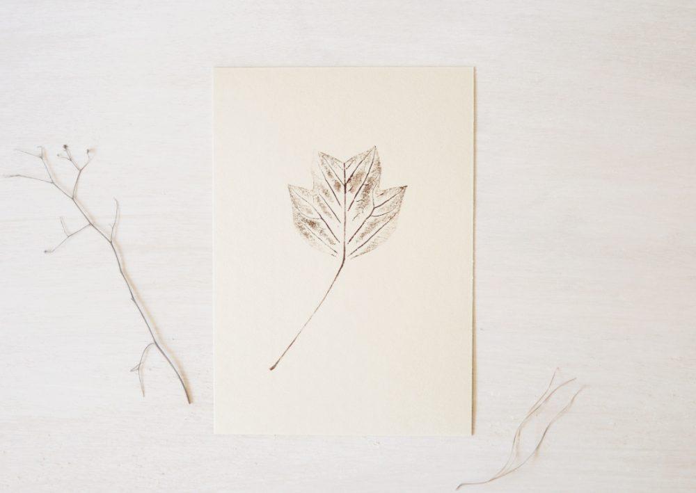 Tulipier - petite affiche nature • atelier 23janvier